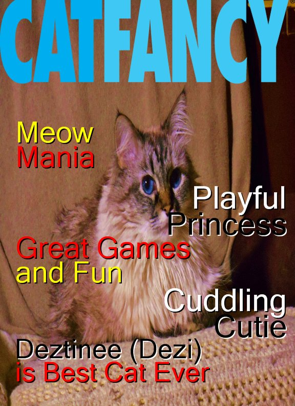Dezi Cat Fancy Cover A+