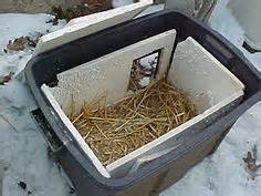 feral cat shelter1