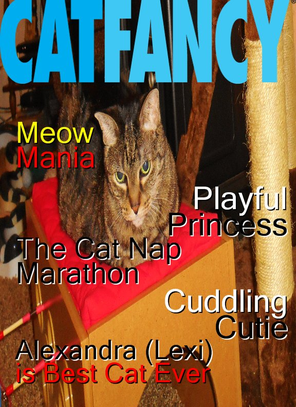 Lexi Cat Fancy cover