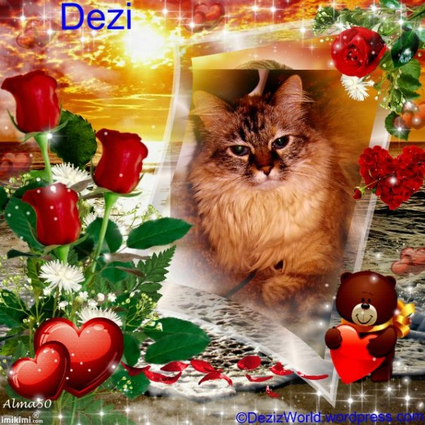 Dezi Happy Valentines Day - 2HEoW-1dW - normal