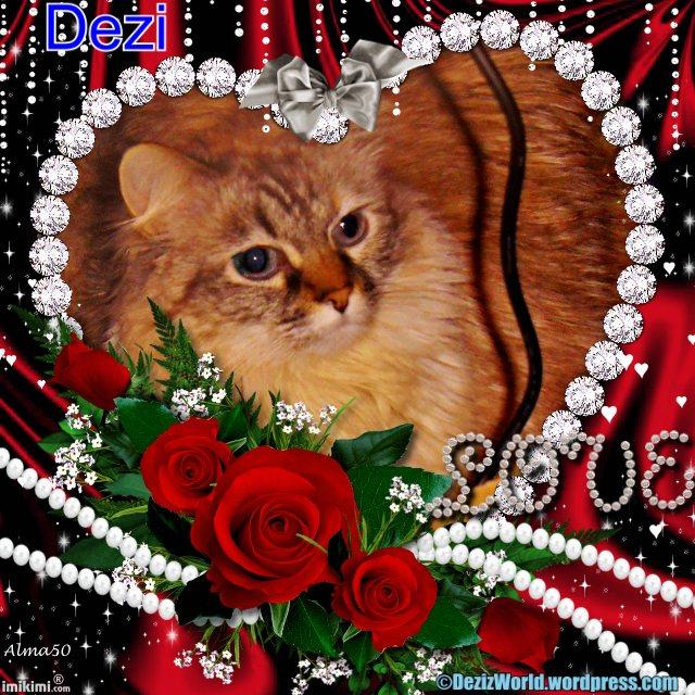 Dezi Valentines Day!! - 2HEoW-1dT - normal