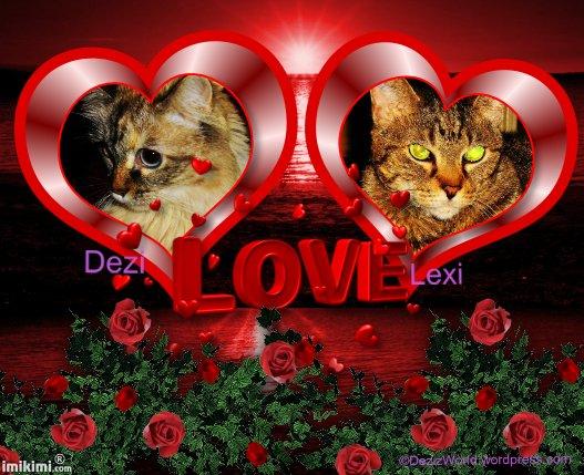 dw D L Love - 2HEoW-1e6 - normal