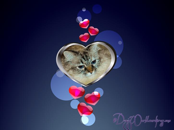 dw Dezi blue heart