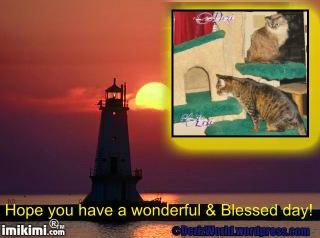 dw DnL blessed - 2HEoW-1ek - normal