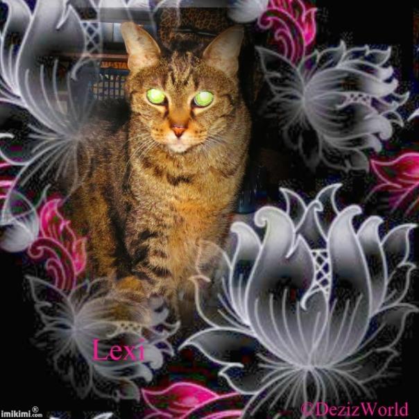 dw Lexi Love - 2HEoW-1e5 - normal
