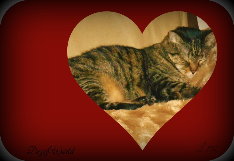 Lexi sleeping heart