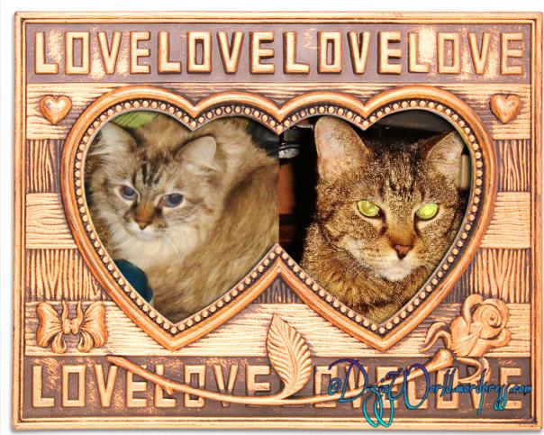 dw D n L Love Hearts