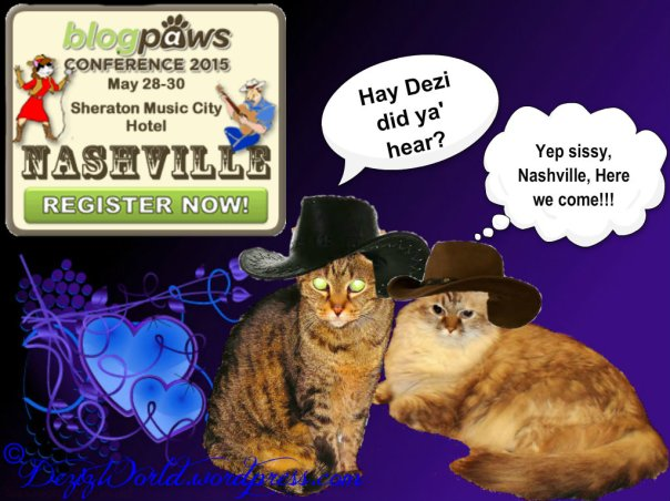 dw DnL Blogpaws ready