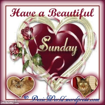 dw DnL Sunday