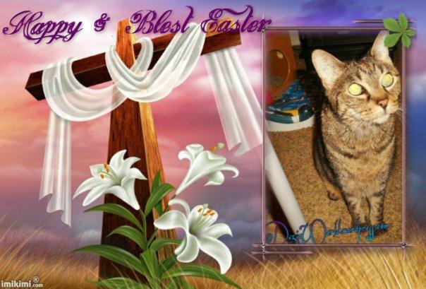dw Lexi Blest Easter