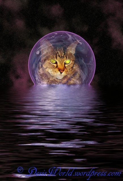 dw Lexi moon on sea