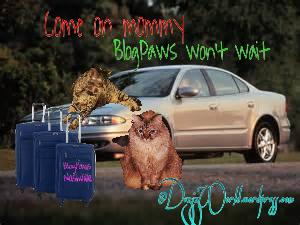 dw Blogpaws I