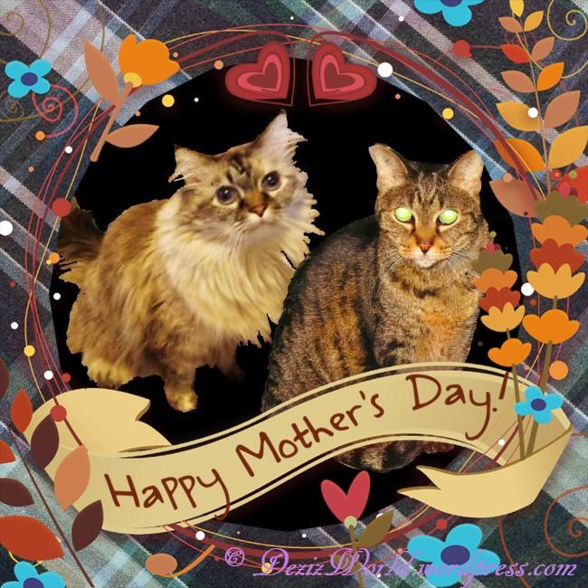 dw D n L Mothersday