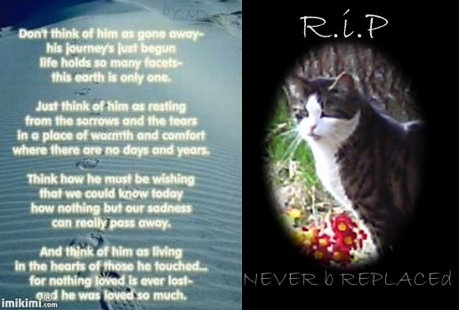 Nissy R.i.P - 2HEoW-1f1 - normal