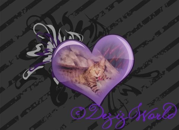 dw-baby Lexi purpleheart