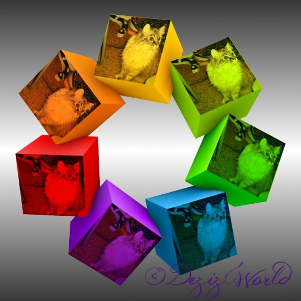 dw-Color Cube Dezi