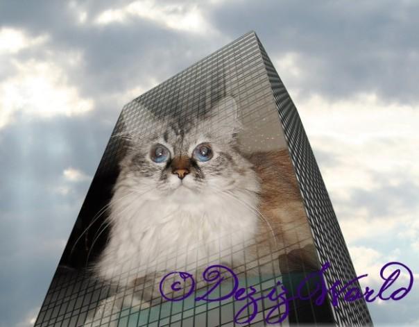dw Dezi Skyscraper