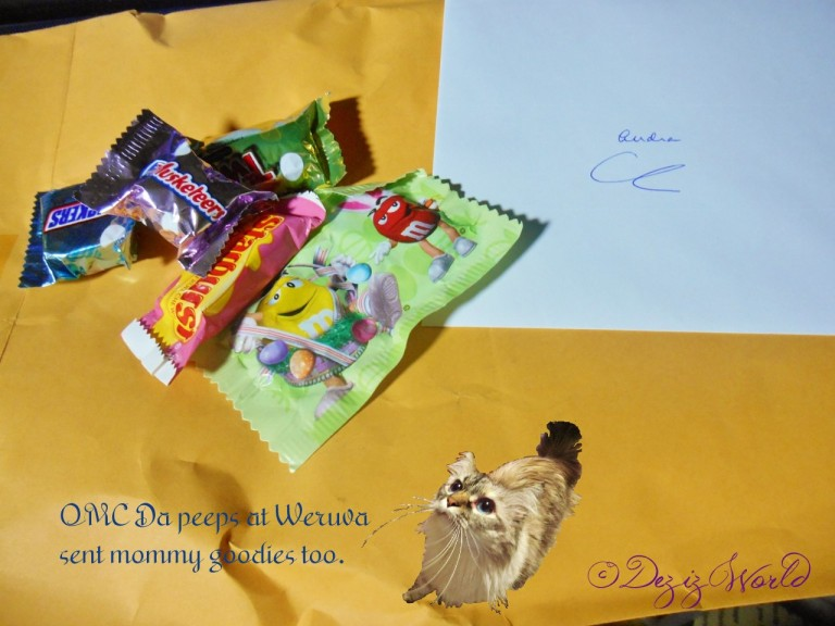 Oh Meow look'it what da peeps fwum Weruva sent mommy.