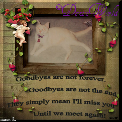 dw-Goodbyes are not ForeverLucky