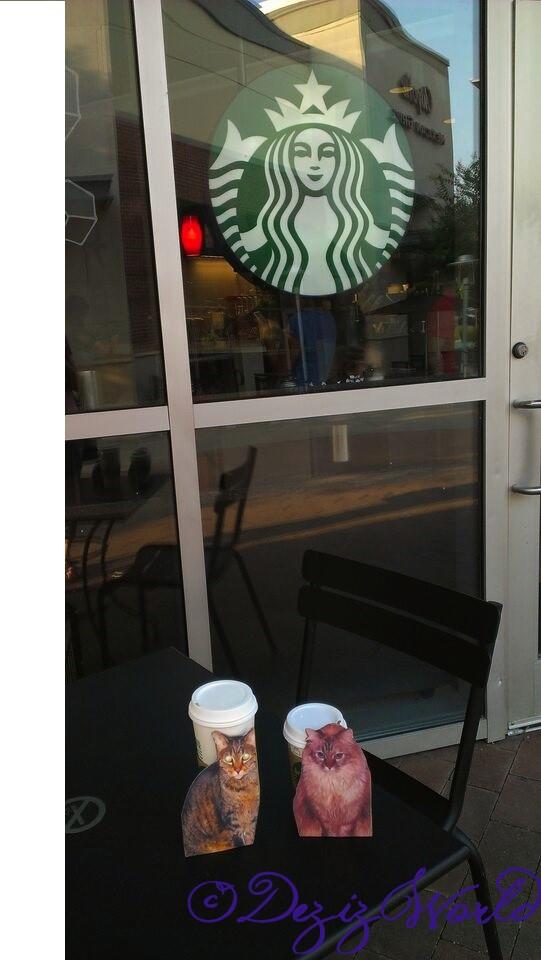 dw-DnLAt Starbucks