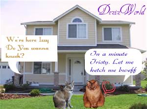 dw-ITAndyhouse