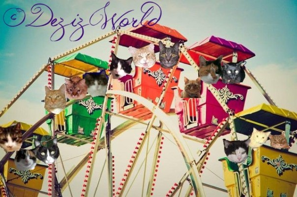 Da Ferris wheel at da Cat Scouts Cawrnival.