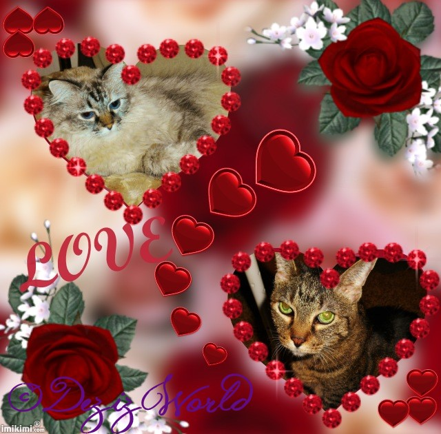 dw-DnL Love - 2HEoW-1el - normal