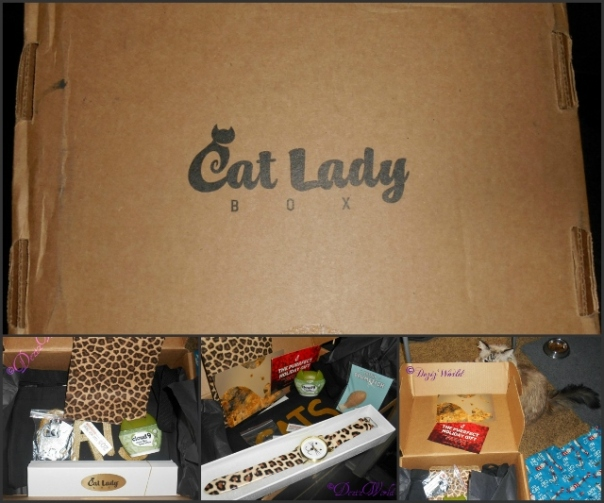 Cat Lady box collage includes a foto of a cat face watch, treats, tote bag