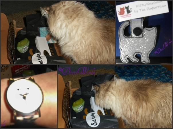 "Cat Lady Box collage. Photo 1 is #Dezi looking into box, photo 2 is a #Cute Cat #keychain. Photo 3 is a closeup of the #""Cat faced"" #Watch and photo 4 is #Dezi getting into box"