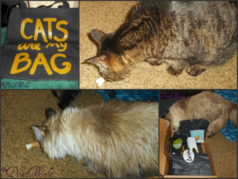 Cat lady box collage with Lexi and Dezi playying with the catnip drumstick and a photo of the Cats are my bag tote