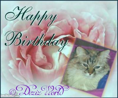 Happy Birthday Dezi frame with Dezi in a pink rose