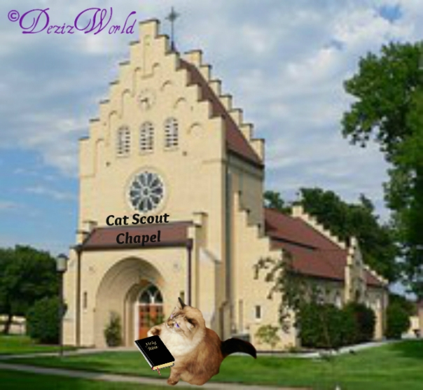 #Dezi the #CatScout #Chaplain with #Bible in front of church