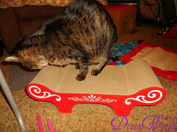 #Lexi enjoys the Catit #Scratcher bench