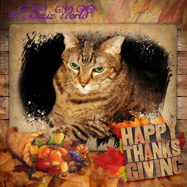 #Lexi in #Thanksgiving frame