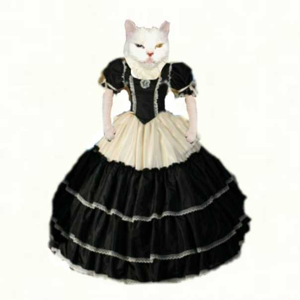 Snowball in ball gown