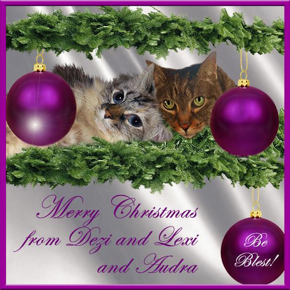 Dezi and Lexi's purple Christmas card