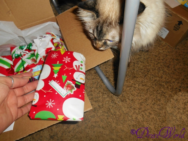 Dezi checking out the gifts from Gracie and Anya