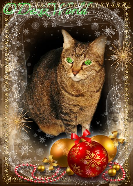 Lexi in a Christmas frame with gold and red ornaments