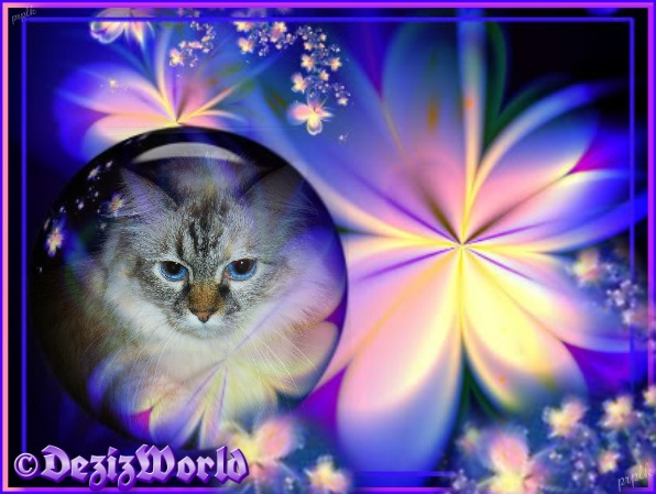 Dezi in blue, pink and purple frame with swirled flowers
