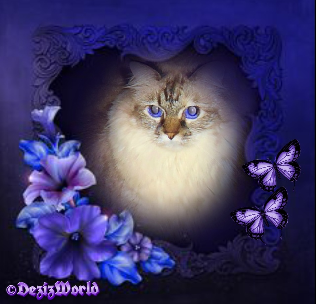 Dezi in purple heart frame with lilies