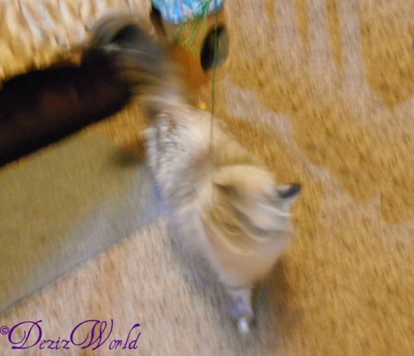 Me was on da move and big ole blur. MOL