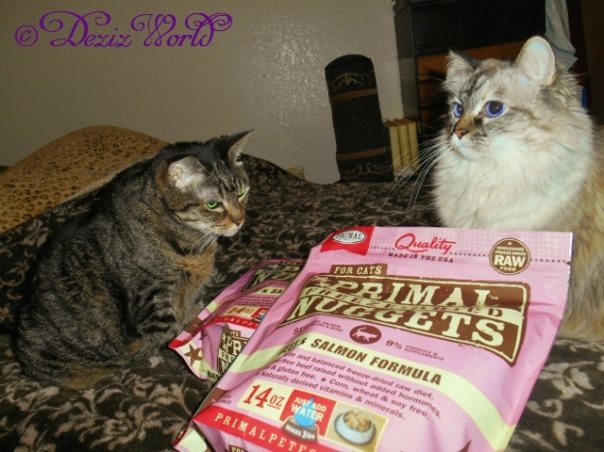 Dezi and Lexi with 2 bags of Primal freeze dried cat food, gift from LouLou