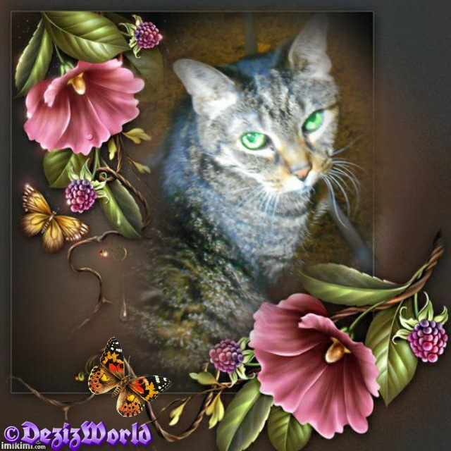 Lexi looking over shoulder in muted brown frame with deep pink flowers and golden butterflies