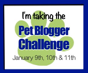 petbloggingchallengebadge