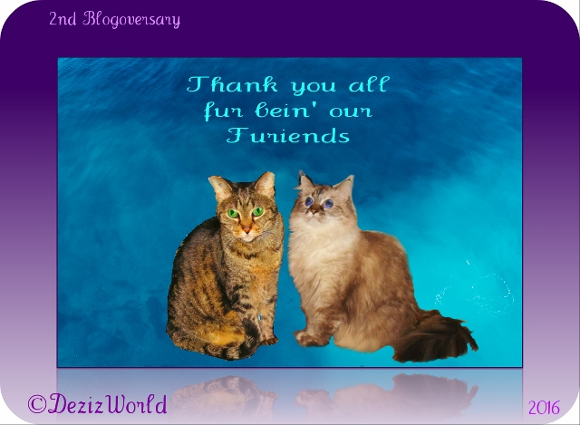 2nd Blogoversary badge, thank you for being our friends