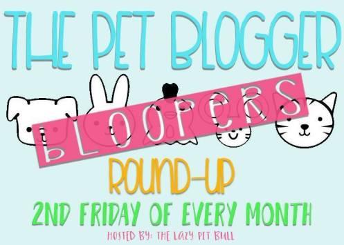 Blooper Round Up