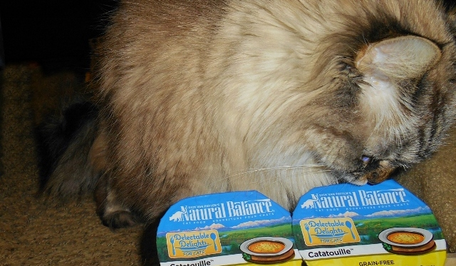Natural Balance Catatouille #ChewyInfluencer
