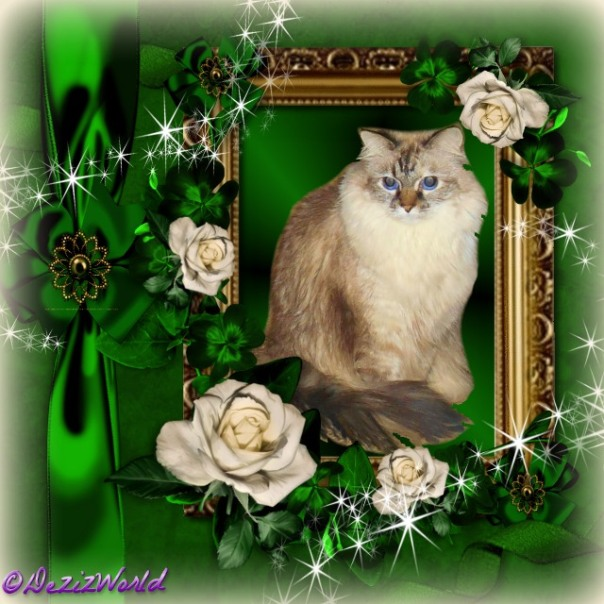 Dezi in a gold frame surrounded by green and cream roses,