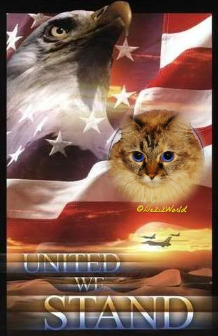 Dezi with U.S. flag, United we Stand