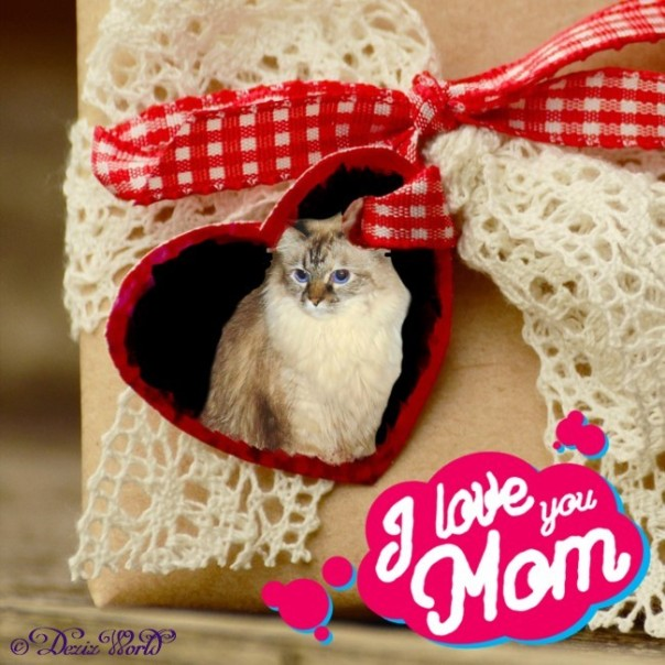 Dezi in heart frame that says I Love You Mom for Mother's day